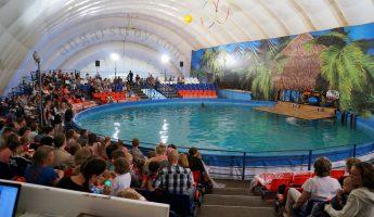 Ангар с бассейном для дельфинария